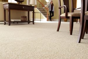 attractive carpet floors